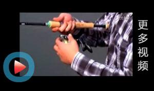 更多钓鱼视频