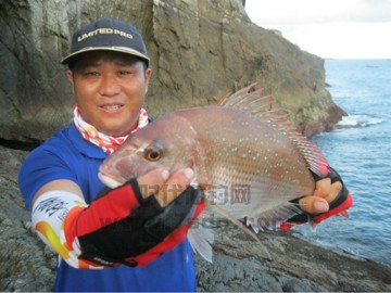 渔山列岛渔获