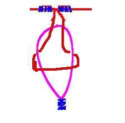 怎么绑鱼钩和绑鱼线