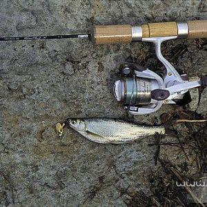 超小旋转路亚亮片拟饵钓鱼技巧