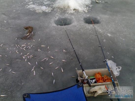 冬天冰钓小公鱼开孔技巧