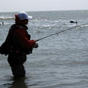 海钓鲈鱼怎样防止假饵挂底