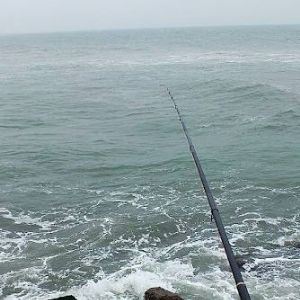 海钓的王者--浮游矶钓